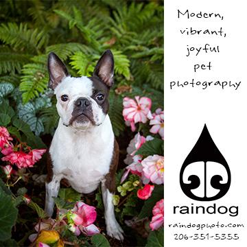 www.raindogphoto.com